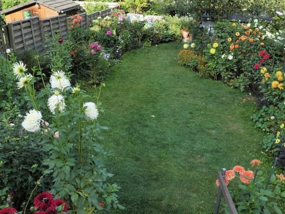 Garten unterer Bereich 2