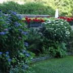 Garten (oberer Bereich. Schatten)