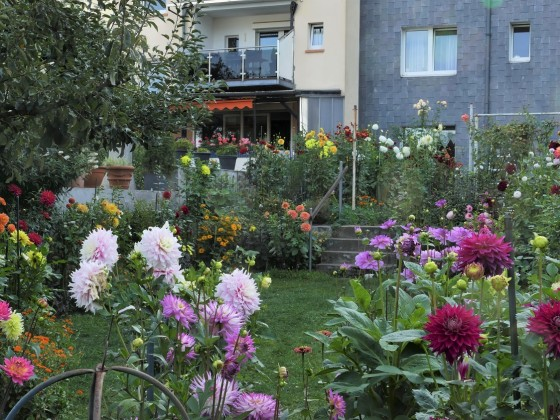 Garten (unterer Bereich)