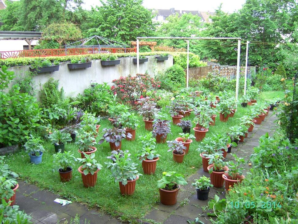 Aus der Wohnung in den Garten