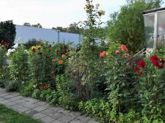 Garten ( oberer Bereich 1)